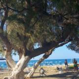 Plaża w Platanias