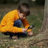 Pasja, ciekawość świata, samodzielność - to podstawa w alternatywnych formach edukacji