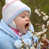 Pół biedy, gdy maluch zje kwiat drzewa owocowego, jest jednak wiele roślin, którymi dziecko może się podtruć.