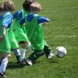 Trening dla kilkulatka to przede wszystkim okazja do zabawy z rówieśnikami, ale i nauka dyscypliny.