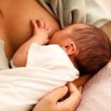 Dłuższa niż 4 godziny przerwa w karmieniu piersią może spowodować powrót pracy jajników i odblokowanie systemu hormonalnego.