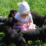 Maluch musi nauczyć się, że ze zwierzątkiem można się bawić, ale nie można się nim bawić.