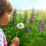 Żaden z tzw. typowych objawów autystycznych sam w sobie nie przesądza o rozpoznaniu autyzmu u dziecka! Każde z tych zachowań lub kilka mogą epizodycznie pojawiać się w rozwoju zdrowego malucha.