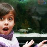 Kupowanie nowej rybki, by dziecko nie zorientowało się, że poprzednia zdechła, to ucieczka przed trudnym tematem.
