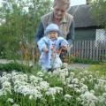 wiosna w przydomowym ogródku