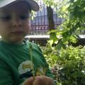 Wiosenny Szymek