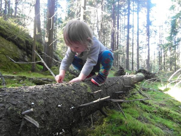 Radość z każdego odkrycia! To, co najbardziej uwielbiam oglądać w swoim dziecku - ciekawość świata! I buzia roześmiana od ucha do ucha nad każdym nowym spostrzeżeniem...