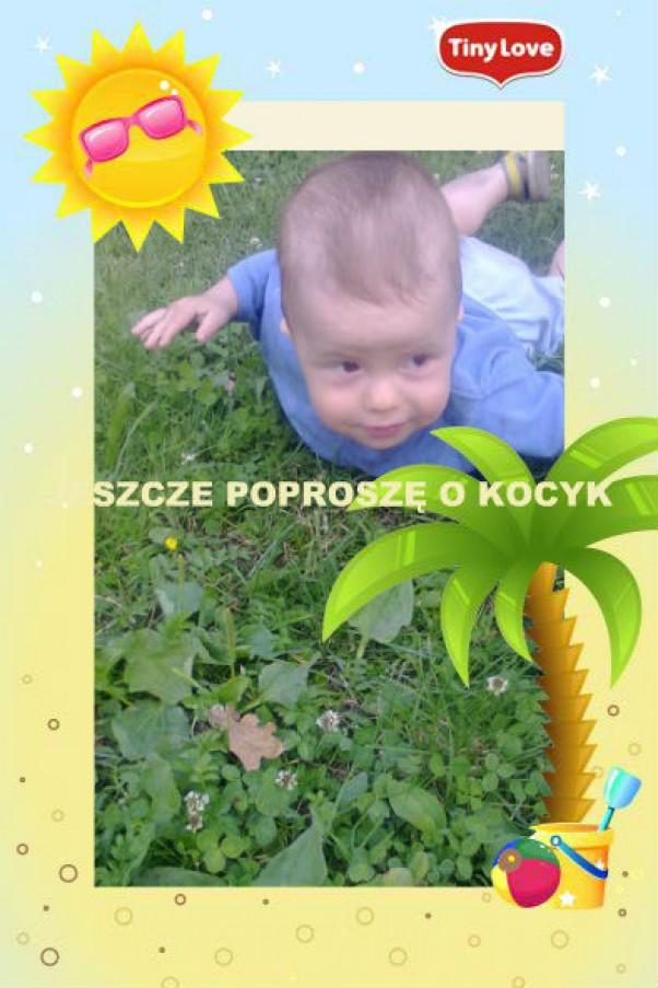 Zdjęcie zgłoszone na konkurs eBobas.pl SŁONECZKO JEST,PALEMKA JEST JESZCZE TYLKO KOCYK