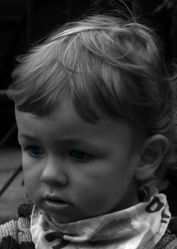 Zdjęcie zgłoszone na konkurs eBobas.pl Aleksander melancholijnie... zdjęcie czarno białe a oczka oryginalnie niebieskie...