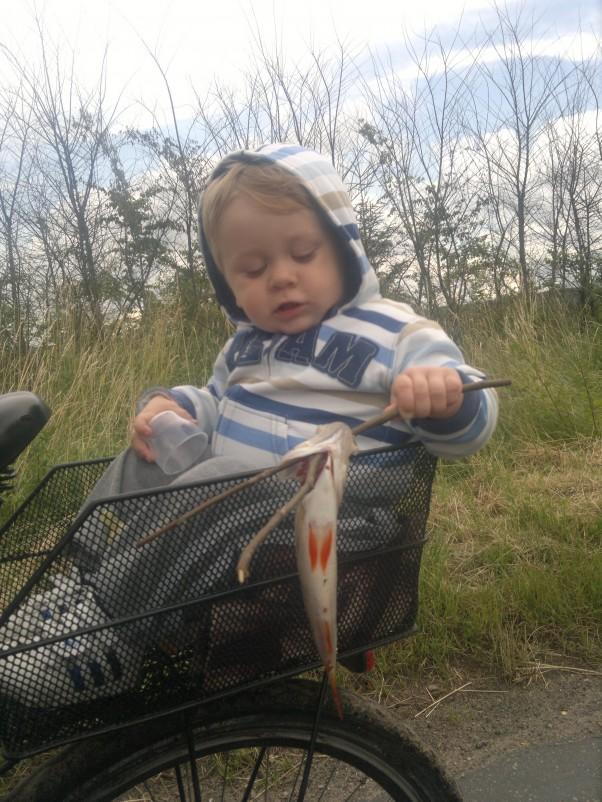 Zdjęcie zgłoszone na konkurs eBobas.pl Z dziadkiem złapałem taką rybkę :-)