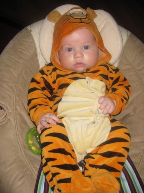 Szymonek tygrysek